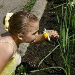 Meisje ruikt aan bloem, illustratie reukzin